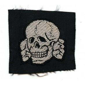 SS Bevo skull by Bevo