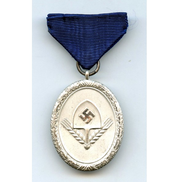RAD 8 year service medal