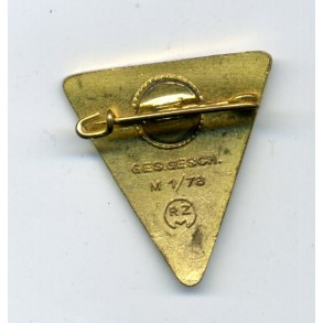 National socialist women NSF pin
