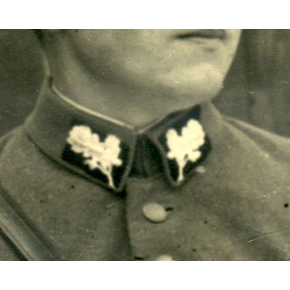 Pre war Stahlhelmbund Wehrsport collar insignia + photo