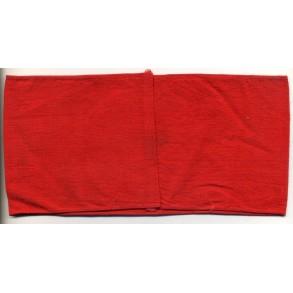 SA sports armband