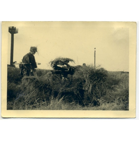 Private snapshot camouflaged flak position